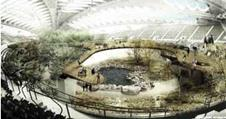 AZPML's entry for the Montreal biodome