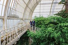 David Marks and Julia Barfield's inspiration: Palm House, Royal Botanic Gardens, Kew