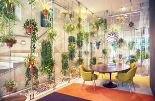An example of a biophilic interior