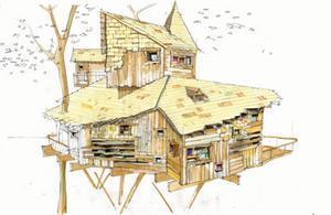 Hand-drawn, coloured perspective of the Alnwick Garden treehouse